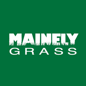 Mainely Grass