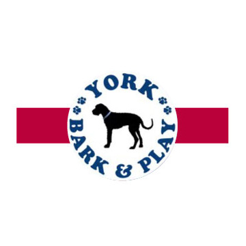 York Bark & Play